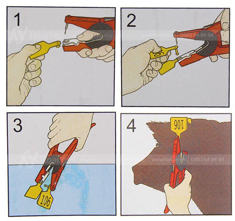 cách sử dụng kìm bấm thẻ tai cho heo, trâu, bò