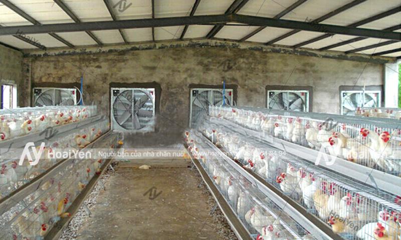 Lắp đặt quạt hút cho chuồng nuôi gà